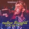 Bobby Dexter - mellow thoughts // lil peep