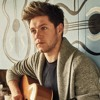 Niall Horan - Crying In The Club By Camila Cabello (Cover)