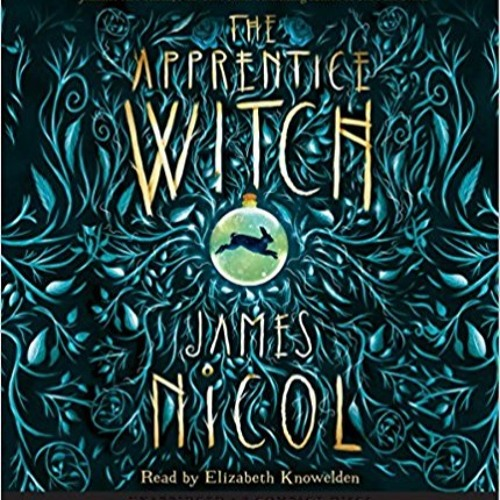 Children 8-12 - The Apprentice Witch - 3rd person narrative - Dialogue M/F teenagers/adult