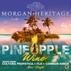 Pineapple Wine Island Remix Feat Fiji And Common Kings Mp3