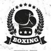 45 Min Boxing & Bodyweight 1