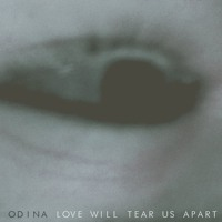 Joy Division - Love Will Tear Us Apart (Odina Cover)