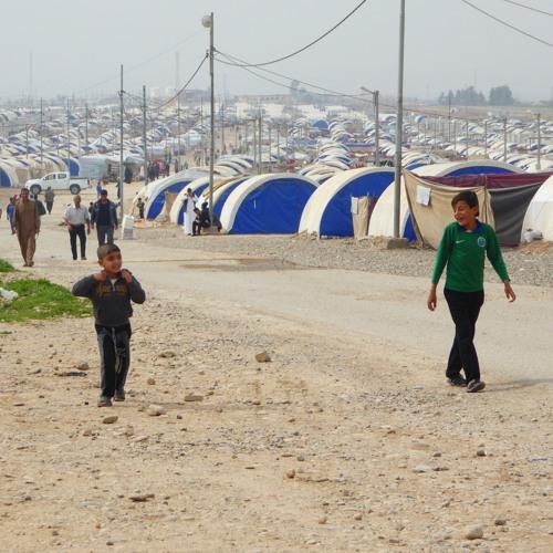 تقرير المنظمات العاملة في مخيم السلامية/ 08-03-2018