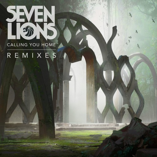 Seven Lions Releases Remixes for His Latest Single 'Calling You Home'
