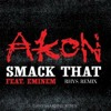 Smack That - Akon (RemixRhys)*FREE DOWNLOAD*