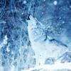 Wolves [ Selena - Gomez - Marsmello] DFN REMIX