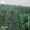 Midland - NTS Radio 2018-02-28 Artwork