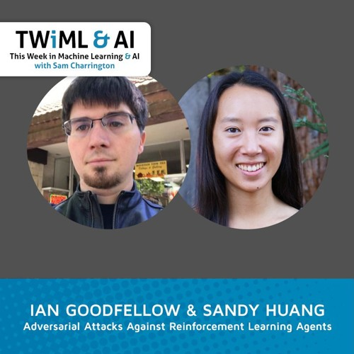 Adversarial Attacks Against Reinforcement Learning Agents with Ian Goodfellow & Sandy Huang
