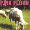 Sheep - Pink Floyd (Tim Preston Bootleg)