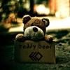 ECO - Teddy Bear [FREE DOWNLOAD]