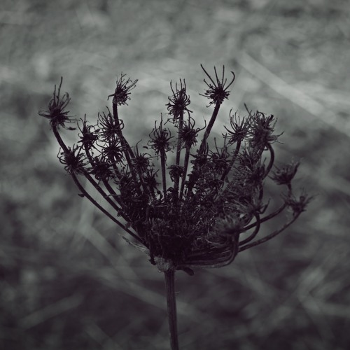 Andrea Cossu - Spira (Continuous Mix)