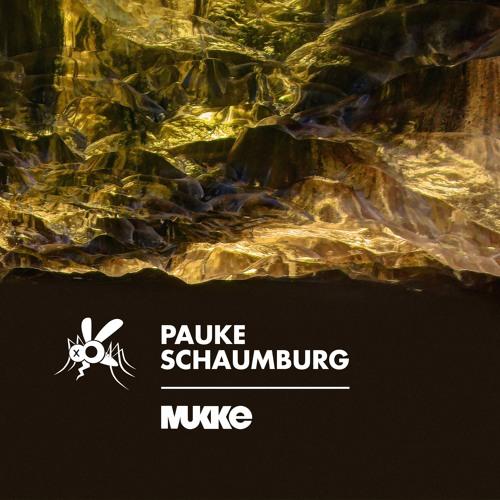Pauke Schaumburg - Transit EP - MUKKE028