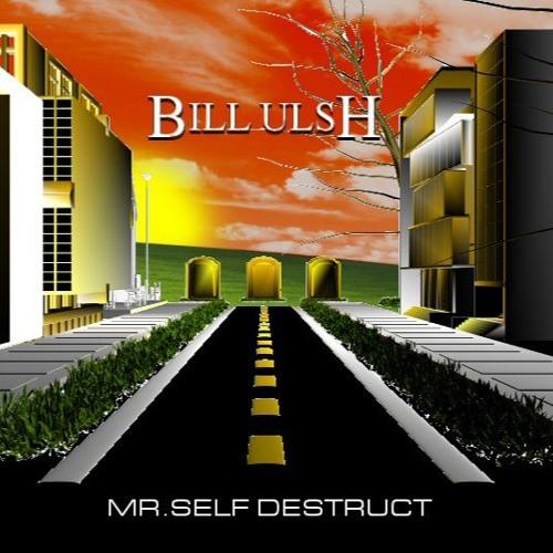 Mr. Self Destruct (NIN cover)