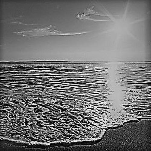 Shoreline Sunshine