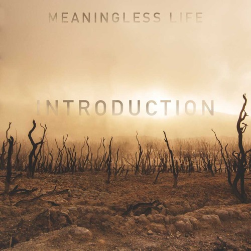 Meaningless Life: Intro