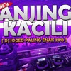 DJ ANJING KACILI GOYANG FULL BASS MANTAP JIWA 2018 mp3