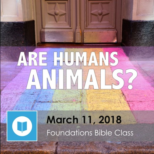 Are Humans Animals? part 3