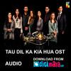 Tau Dil Ka Kia Hua OST - HUM TV Drama - PAKISTANI - ClickMaza.com