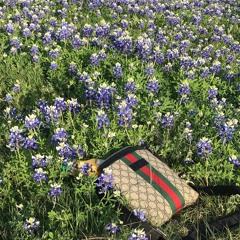 oj in my gucci bag