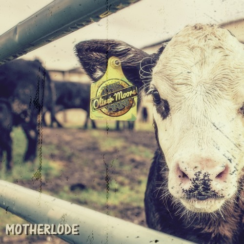 Motherlode - The Oliver Moore Band(m)