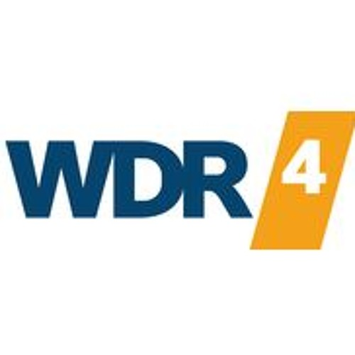 WDR4 PROJECT FAIR PLAY Lando Van Herzog - Interview