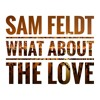 Sam Feldt - What About The Love (Memo Bootleg) FREE DOWNLOAD