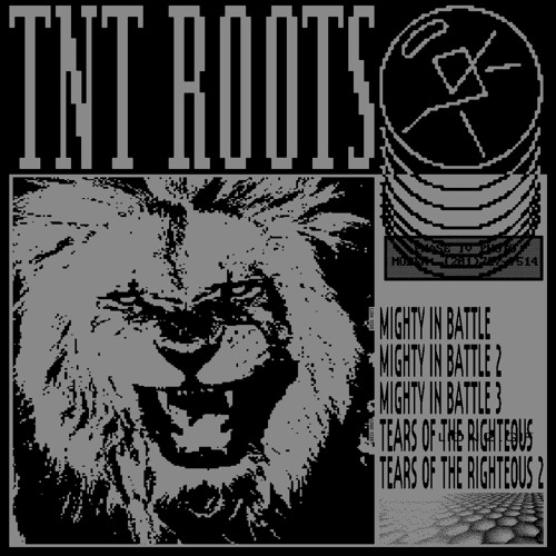 BKV 017 TNT Roots - Mighty In Battle / Tears Of The Righteous