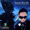 Harsh Mix V9 (Exlusive DJ-Mix For Acidic Infektion)