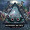 Djantrix & Modual - Cisterna ( OUT NOW @Nataraja Records )