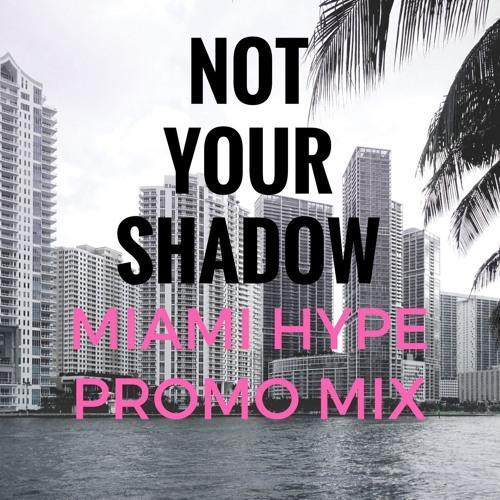 Miami Hype Promo Mix