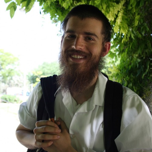 Ariel Evan Mayse - Neo-Hasidism and the Theology of Halakhah