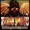 Big pun - Brave In The Heart (instrumental)