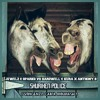 Jewelz & Sparks vs Hardwell & KURA X Anthony B - Shuriken Police (Vincenzo Caira MixMash).mp3