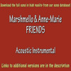 Marshmello & Anne-Marie - FRIENDS (Acoustic Intrumental)