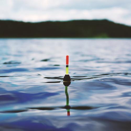 Fishing & Outdoor Report