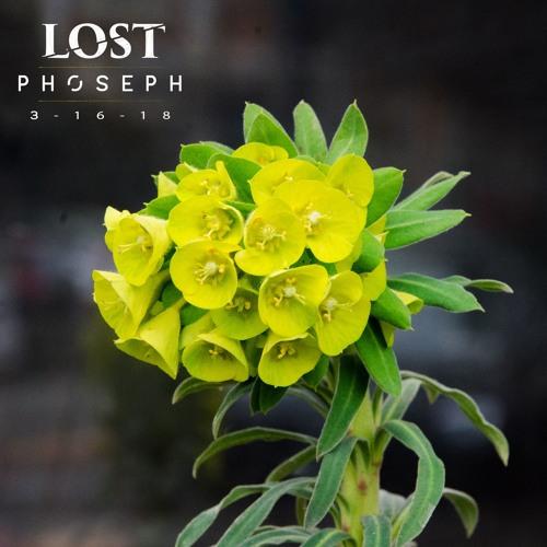 Phoseph - Live @ LOST 3 - 16 - 18