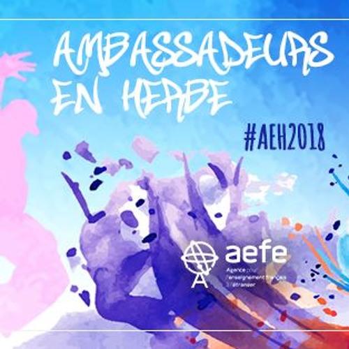 Ambassadeurs en Herbe Finale Zone 2018 - C'est parti - Présentation
