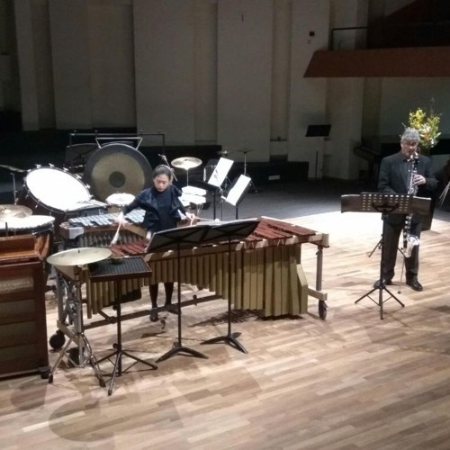 Duo Antwerp plays Controverse (bass clarinet and percussion)by Jacqueline Fontyn