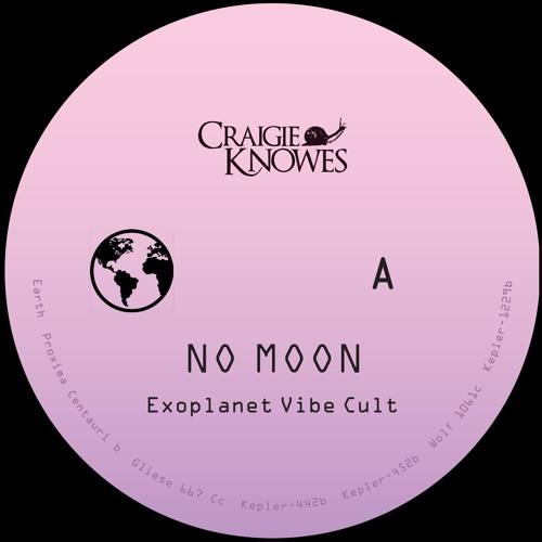 No Moon - Exoplanet Vibe Cult [CKNOWEP8]