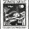 OM 13 LP - Jacob Yates - The Hare, The Moon, The Drone (album sampler)