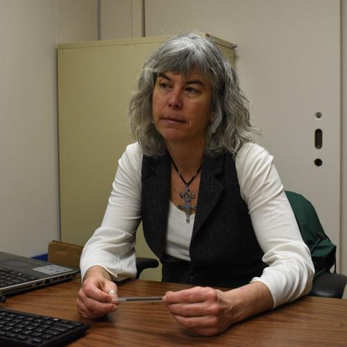 Sue Hilderbrand Q&A