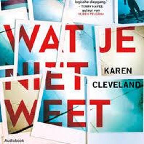 Wat je niet weet - Karen Cleveland, voorgelezen door Chava voor in 't Holt