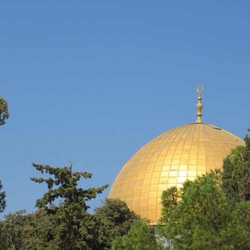 Die Heilige Woche in Jerusalem