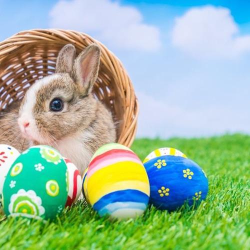 Easter broadcast