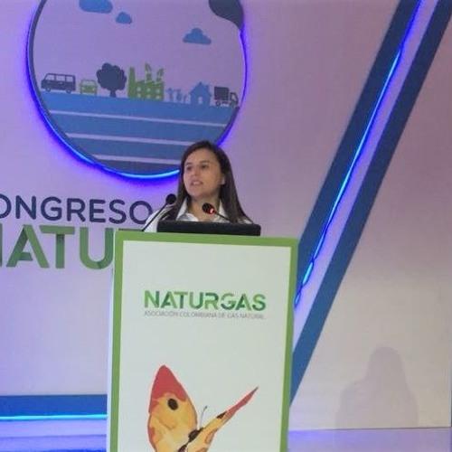 Declaraciones Rutty Paola Ortiz, apertura de datos sector de energía y gas combustible