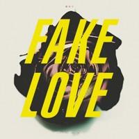 Fake Love (ft TFGee x TFSting)