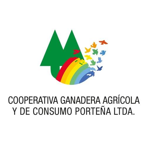Campaña pasturas y verdeos 2018