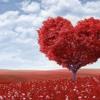 Love-Unknown Writer