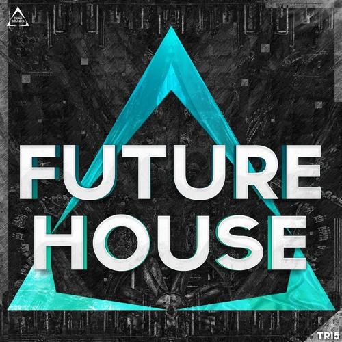 DJKING2 - Future Voices