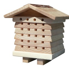 Native Bee Boxes